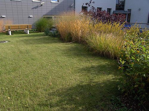 Dachbegr nung dachterrassen dachgarten arkadia for Gartengestaltung berlin